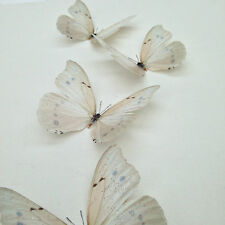 4 Ivory- Cream Sparkling 3D Butterflies Bedroom Wedding Butterfly Decorations