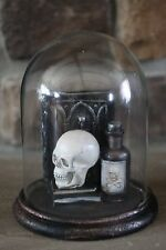 Halloween Glass Enclosed Skull, Poison bottle with skull & crossbones & Books