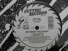 """2 in a room do what you want us-remixes 12 """" Maxi Single (M98)"""