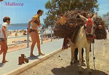 Bg35400 mallorca donkey types folklore spain
