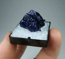 AZURITE crystal * Milpillas Mine * Mexico