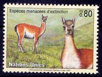 Guanaco, Wild Animals, Endangered Species, United Nation MNH (H144)