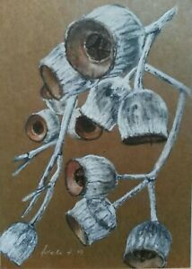 Original Pastel Charcoal Art Drawing Painting A4 Australian Gumnuts Eucalyptus