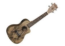 Tanglewood Acoustic/Electric Concert Ukelele Walnut - Natural Satin - TUPWEC