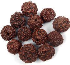 15-18mm Natural Brown Rudraksha Round Ball Buddhist Mala Meditation Beads (12)