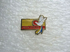PIN'S SECOURS CATHOLIQUE / ANIMAL OISEAU COLOMBE PIN PINS   T22
