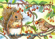 "ACEO Fine Art Print  ""Let's Share"" Squirrel And Sparrow Wildlife Art by Patricia"