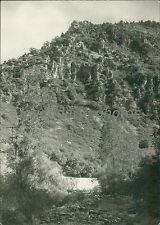 1938 Ogden Canyon Utah Original News Service Photo
