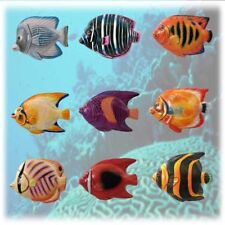 (9) Tropical Fish Ceramic Magnets! Bid Now Or Add To Your Watch List! Hurry!