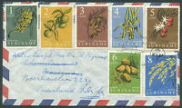 SURINAME TO NETHERLANDS Old Air Mail Cover VF