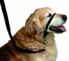 Beaphar Nylon Dog Head Collars Collars