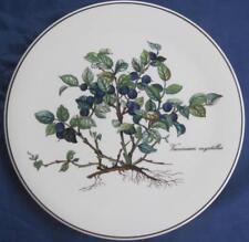 "Villeroy & Boch Botanica Porcelain Trivet Vaccinium Myrtillus 8"" Blue Green NICE"