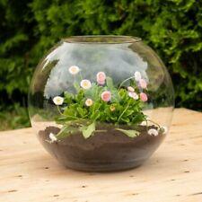Glass Handmade fish bowl round Vase Terrarium 24 cm planter