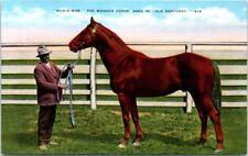 Kentucky Postcard The Wonder Horse Man O'War Faraway Farm Lexington KY Riddle