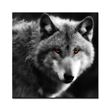 Wolf Canvas Print Red Eyes Animals Black Wall Art Giclee Unframed 24x24''
