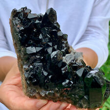 1.23LBNatural Beautiful Black Quartz Crystal Cluster Mineral Specimen Rare 93