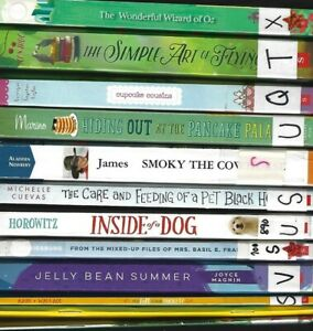 24 Childrens Chapter Books lot good condition (5th grade loved) Popular Titles