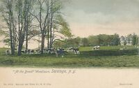 SARATOGA NY – Hand Colored Postcard of Woodlawn At the Brook – udb (pre 1908)