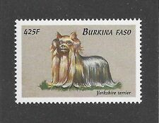 Dog Art Body Study Portrait Postage Stamp YORKSHIRE TERRIER Burkina Faso MNH