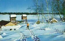 Postcard Trapper's Camp Sucker Lake Alaska