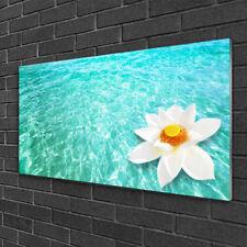 Acrylglasbilder Wandbilder Druck 125x50 Blumen Wasser Kunst