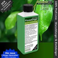 Ficusdünger Profi Linie Dünger für Ficus benjamin, Wurzel + Blattdünger flüssig