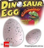 New Large Hatching & Growing Dinosaur Egg Jurassic Era Toy Gift for Children