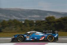 Stephane Richelmi Hand Signed 12x8 Photo Signatech-Alpine Le Mans 2016 2.