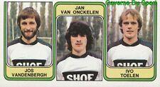 379 VANDENBERGH VAN ONCKELEN IVO TOELEN FC.DIEST STICKER FOOTBALL 1983 PANINI