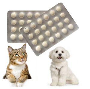 24 Tablets, Dog Wormer, Worming Tabs,Dewormer,Cat deworming,in English,Effective
