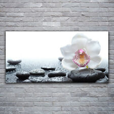 Tulup Print on Glass Wall art 120x60 Picture Image Flower Stones