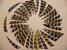 """4"""" Shield Naturfedern 36+3 u. Weiß/ barred u. gelb/ barred Federn Truthahnfedern"""