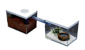 Ant Housing & Sundries