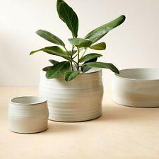 "New ListingWest Elm Mariana Handthrown Grooved-Shape Ceramic Planter, 5.3""diam. x 4""h."