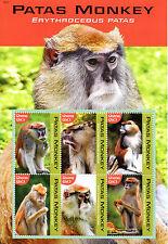 Ghana 2016 MNH Patas Monkey 6v M/S Monkeys Primates Wild Animals Stamps