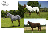 Equitheme Sweet Itch Fly Rug UV Horse Protection Belly Full Neck Eczema Sheet