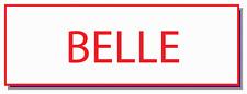 BELLE NAME BADGE FOR MELS DINER ON ALICE TV SERIES FOR HALLOWEEN COSTUME MAGNET