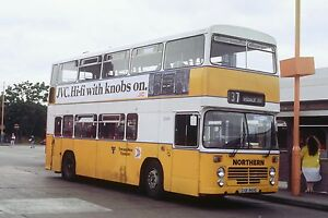 NORTHERN / TYNE AND WEAR TRANSPORT DGR869S 6x4 Quality Bus Photo