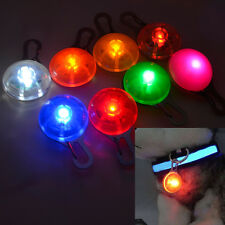 COON LIGHT FOR  YOUR DOG COLLAR