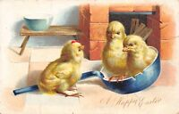 Easter~Hen Chicks in Chipped Blue Pan~Rooster Chick~Embossed~1905 TUCK Postcard