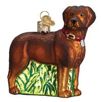 """Standing Chocolate Lab"" (12508)X Old World Christmas Glass Ornament w/OWC Box"
