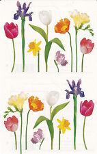 Mrs. Grossman's Giant Stickers - Photo Spring Stems - Tulip, Iris - 2 Strips