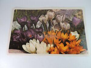 Crocus Flower Linen Look Reversible 70's Vinyl Placemats Dining Table Cover