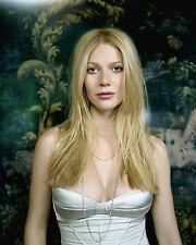 Gwyneth Paltrow Unsigned 8x10 Photo (10)