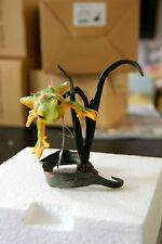 Country Artists*WALLACE'S FLYING FROG*03979-retired-rare