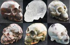 HUGE Natural Carved Crystal Skull, Realistic, Gemstone Healing 3'' 7 kinds
