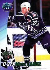 1995-96 Houston Aeros #13 Marc Laniel