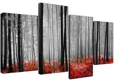 Canvas Art of Red Forest Woodland Trees in Black and White for your Living Room