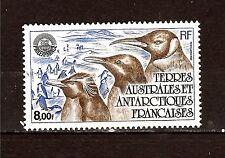 T.A.A.F1982  OISEAUX- birds: neuf N°71YT  pingouin des terres australes 1m215t2