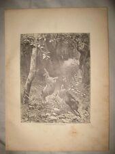 ANTIQUE 1883 RABBIT HUNTING IN COLORADO ENGRAVED PRINT RIFLE GUN RARE NR